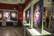 htmlentities(FACES-GalerieTour PopUp Store, ENT_COMPAT, 'ISO-8859-1')